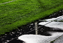 Puddle or damp ground